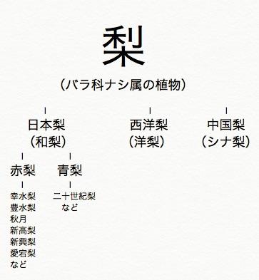 梨の分類と品種