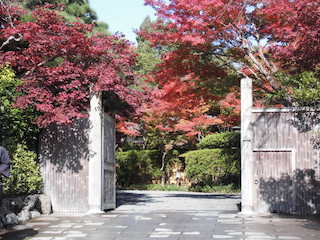 嵐山吉兆の紅葉