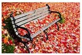 紅葉の絵画