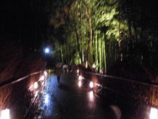 京都・嵐山の竹林の小径ライトアップ